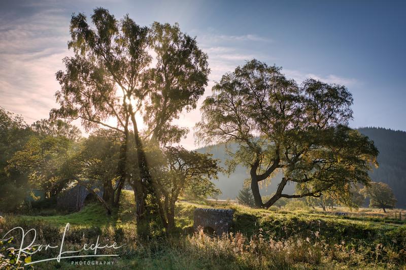 Sunrise at St. Mary's Loch, Scottish Borders