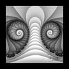 Image 10032