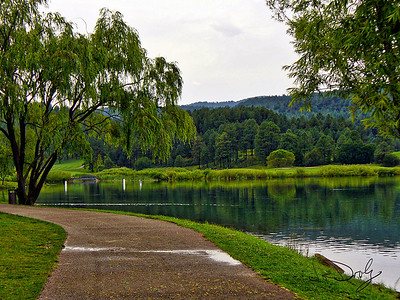 Stroll by the Lake