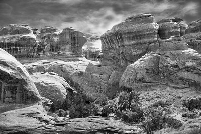 Arches National Park in Black and White #3