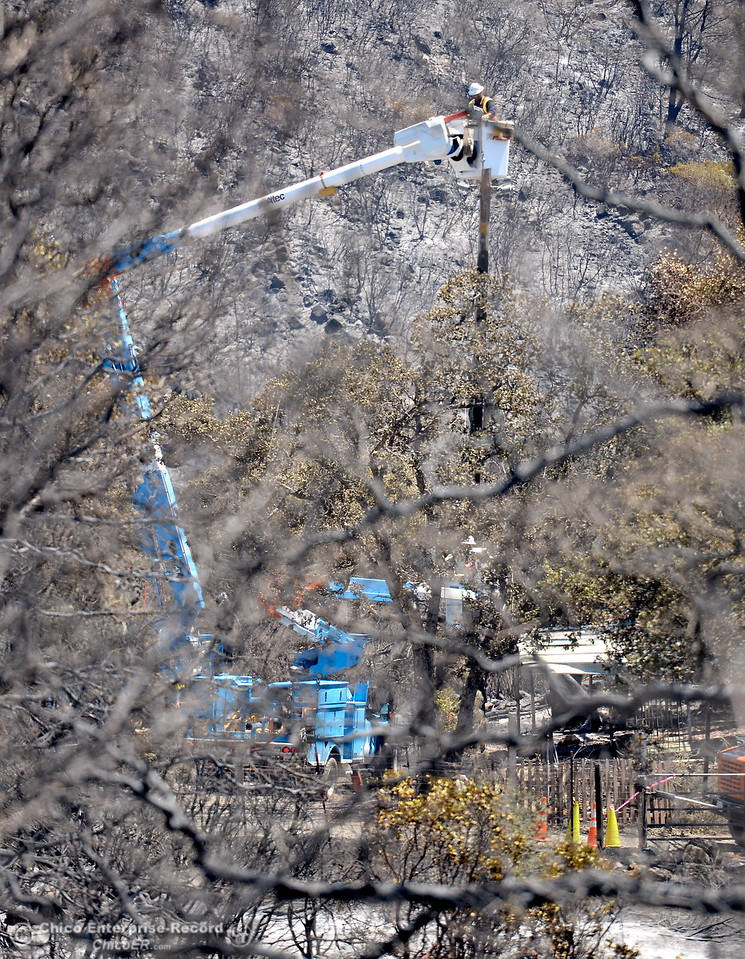 A PG&E Lineman is seen through the trees working to establish power back to a devestated neighborhood following the Wall Fire near Oroville, Calif. Mon. July 10, 2017. (Bill Husa -- Enterprise-Record)