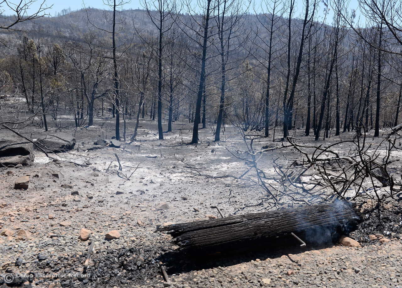 Remnants of a power pole smolders among some of the 5,600 acres that have burned during the Wall Fire near Oroville, Calif. Mon. July 10, 2017. (Bill Husa -- Enterprise-Record)