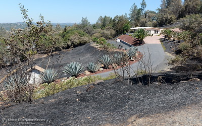 A home saved in part by defensible space is seen from a neighbors yard along Peak View Drive after the Wall Fire near Oroville, Calif. Mon. July 10, 2017. (Bill Husa -- Enterprise-Record)