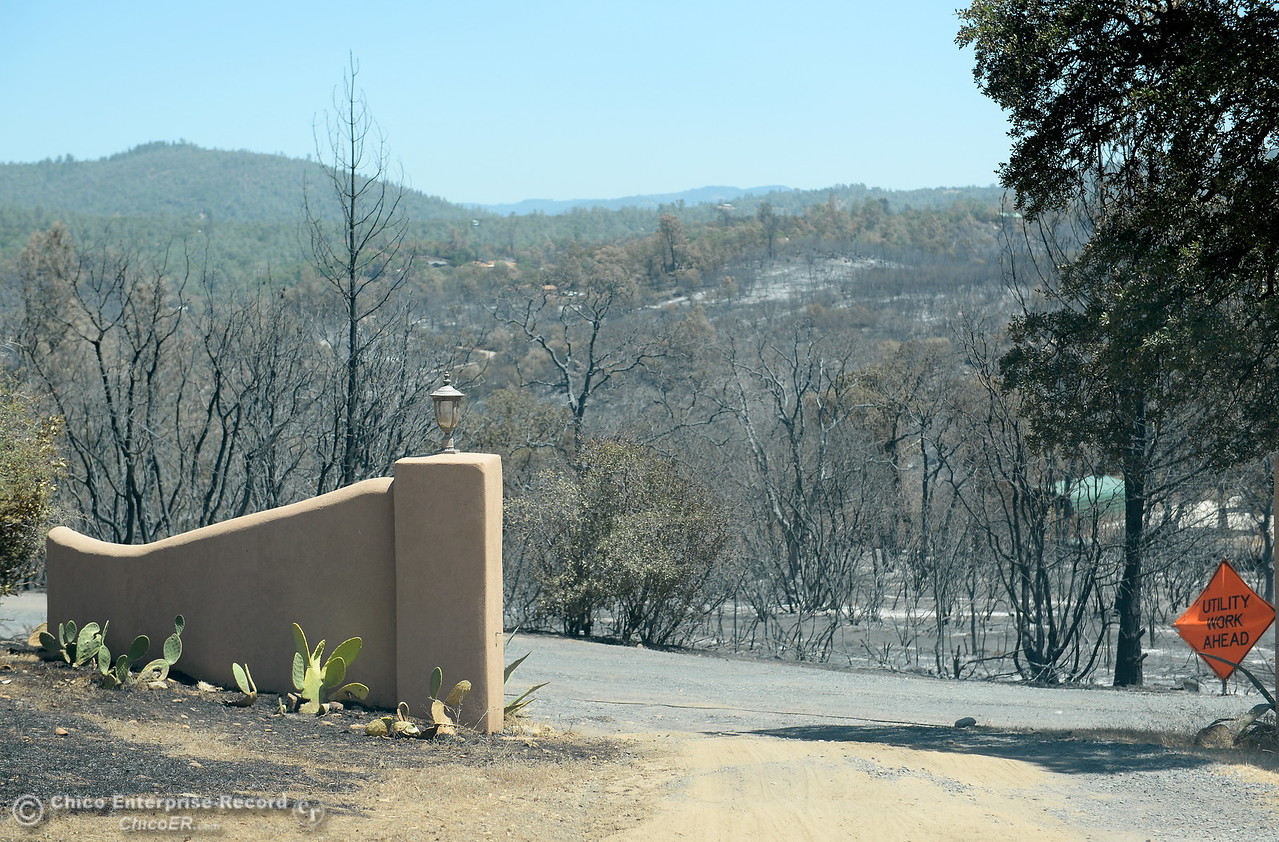A view from the driveway of the Prestella Family home off of Viewcrest Drive is a reminder of how lucky they are to still have their home following the Wall Fire near Oroville, Calif. Mon. July 10, 2017. (Bill Husa -- Enterprise-Record)