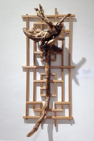 Lattice with Dragon Root