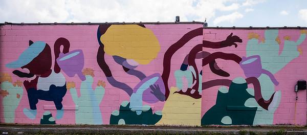 Salut - Rochester, NY