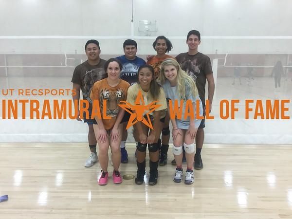 Fall 2017 Volleyball Coed A Champion Animal Kingdom
