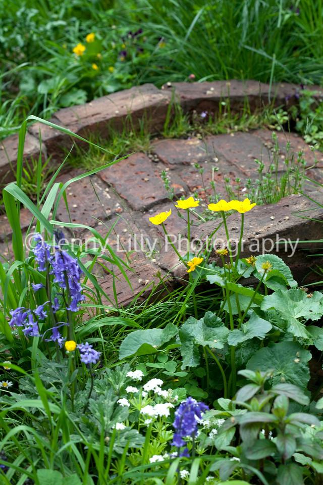 The Plankbridge Shepherdu0027s Hut Garden, Artisan Garden, Chelsea Flower Show  2012, Designer Woolcott