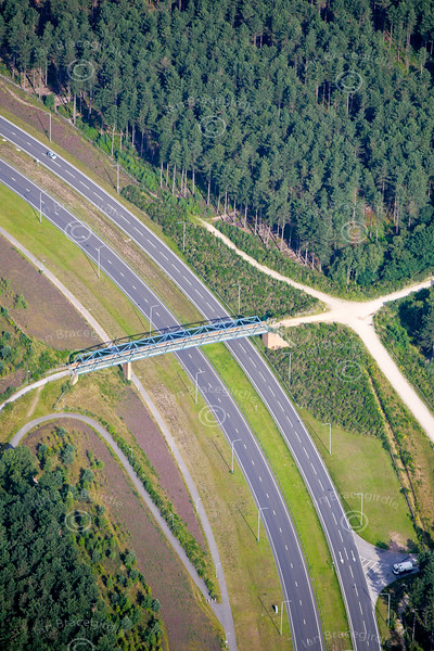 aerial photo of an empty road through a forest.