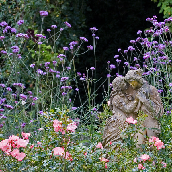 BOY AND GIRL STATUE AMONGST PINK ROSES AND PURPLE VERBENA BONARIENSIS