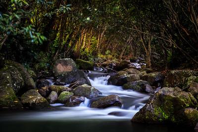 A Calm Serenity, Kauai