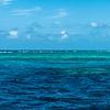 Great Barrier Reef (Australia - Nov 2016)