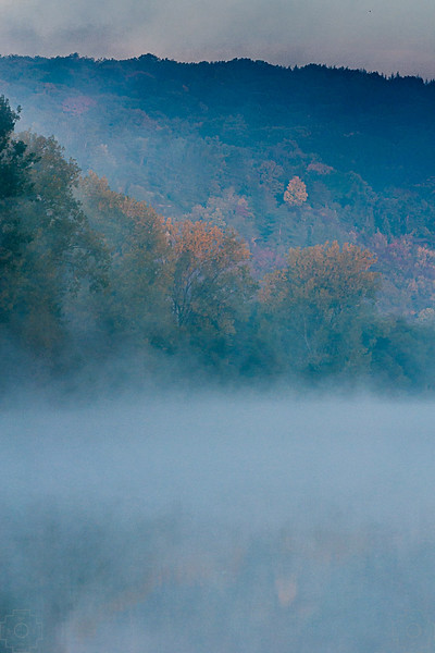 Germany - Main River - Morning Fog.jpg