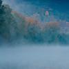 Germany - Main River - Morning Fog.jpg