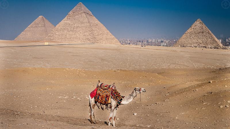 Egypt - Cairo - Giza Pyramids.jpg