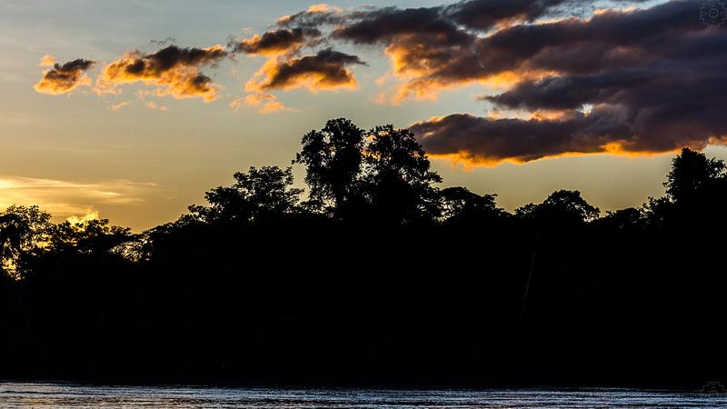 Peru - Rainforest-9.jpg