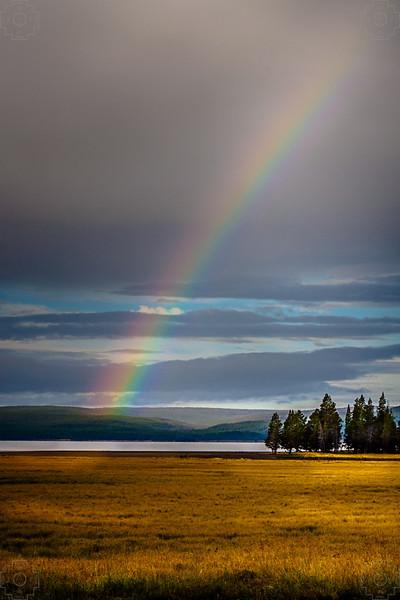 USA - Yellowstone-22.jpg