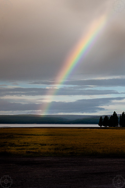 USA - Yellowstone-21.jpg