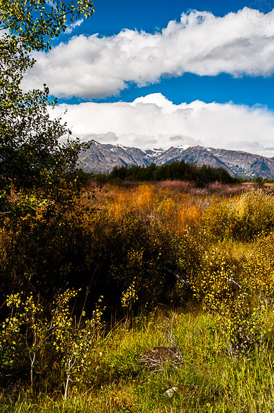 USA - Grand Tetons-3.jpg