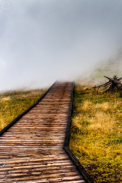 USA - Yellowstone-9.jpg