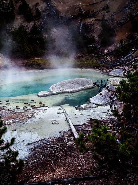 USA - Yellowstone 27.jpg