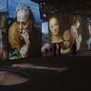 France - Le Baux - Carrieres de Lumieres -  10.jpg