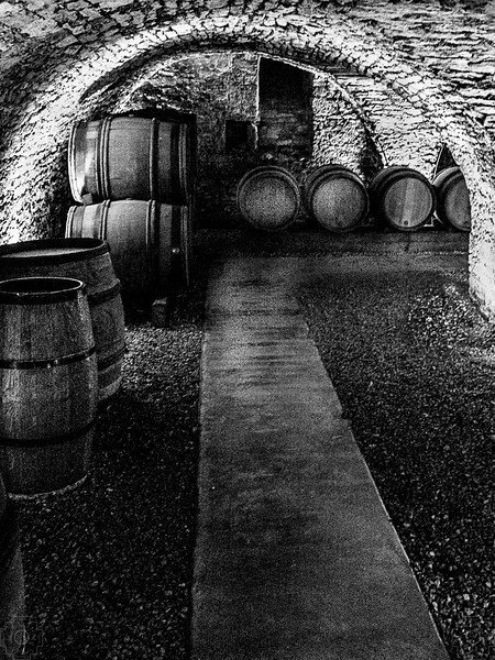 France - Beune - Wine Cellar - BW.jpg