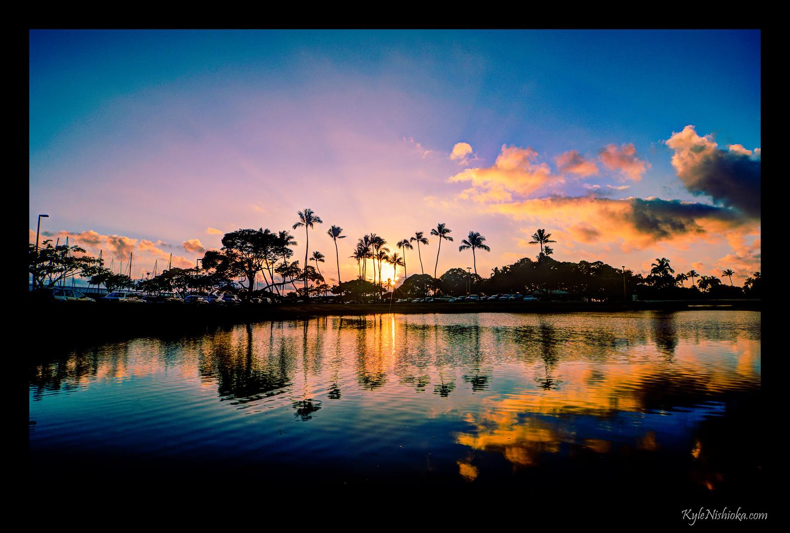 Ala Moana Pond - 2012-01-12
