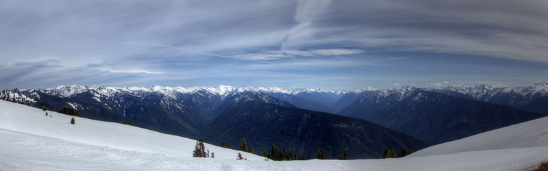 Hurricane Ridge, Port Angeles WA