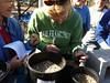 Annette places first ceanothus cutting in Vermiculite/Perlite medium.