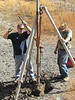 Sean and Burt pull the recalcitrant post out of the ground.