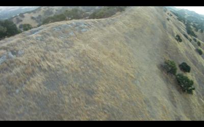Shell Ridge Marshall Flyover - YST Eradication Area