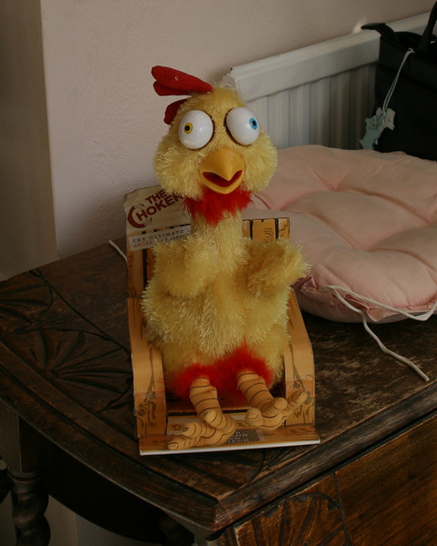 The Chicken!