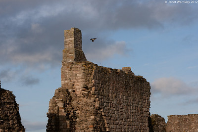 The Linsefarne Abbey ruins