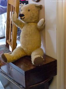 A well loved teddy bear