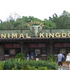 Main sign for Animal Kindgom