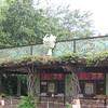 Left side of main entrance to Animal Kingdom