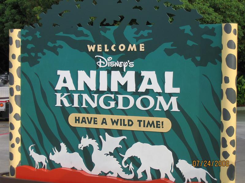 Outisde the Animal Kingdom