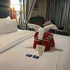 Tonight's towel animal is the Aardvark.