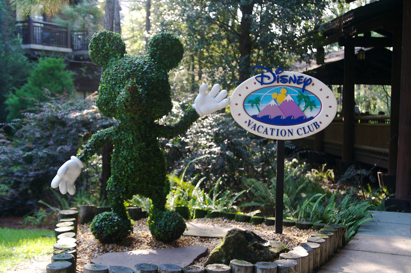 Topiary Mickey greeting guests on their way from the main lobby to the Villas wing at Wilderness Lodge.