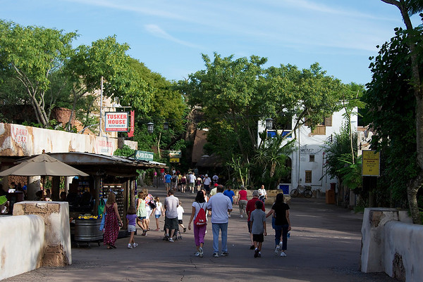 Animal Kingdom 2010
