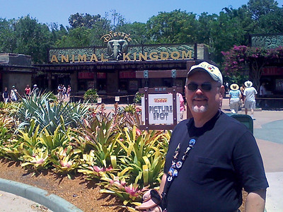 Animal Kingdom Spring 2008