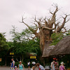 Harambe Village in the Africa section of Disney's Animal Kingdom Park.