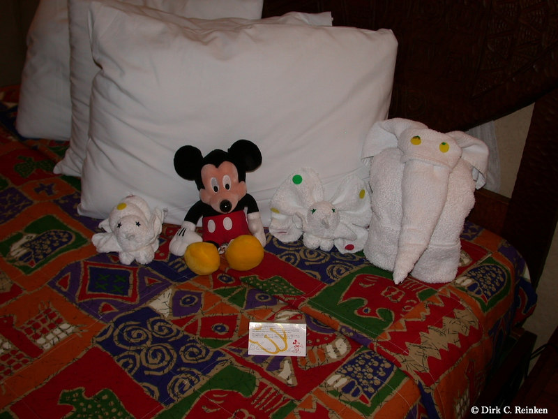 Our room at Disney's Animal Kingdom Lodge.