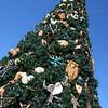 Animal Kingdom entrance Christmas tree