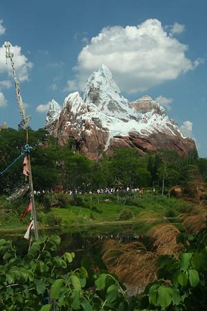 Disney's Animal Kingdom 6-02-08