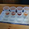 History of Beer in America... aka free Sam Adams beer tasting!