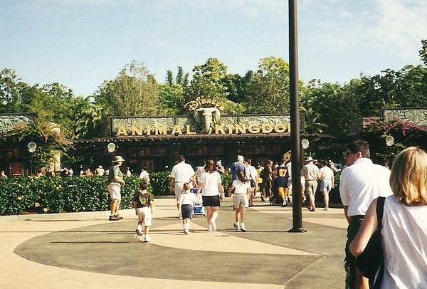 Walt Disney World - Animal Kingdom