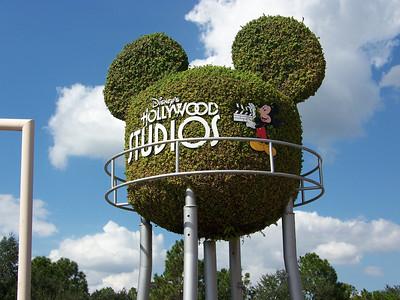 5. Animal Kingdom & Disney's Hollywood Studios