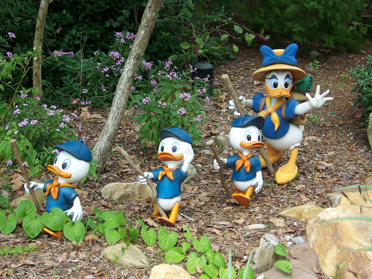 These cute figures of Daisy, Huey, Dewey, and Louie are in the Camp Minnie-Mickey section of the park.<br /> [Disney's Animal Kingdom]